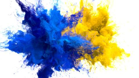 Color Burst - Multiple colorful smoke explosions fluid particles alpha matte Animation