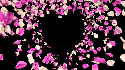 Flying Romantic white pink Rose Flower Petals heart Alpha isolated Loop Animation