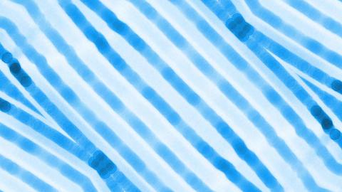 Flashing Neon pattern Stock Video Footage