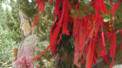 Red ribbon wrapped around branches.China Fortuna... Stock Video Footage