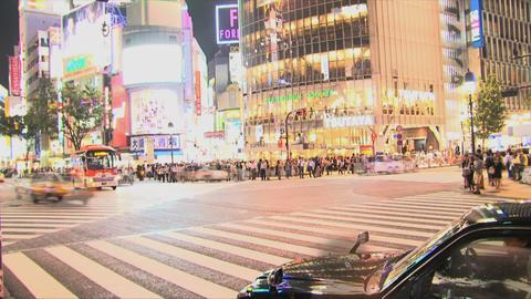 Shibuya Crossroad 04 Footage