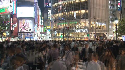 Shibuya Crossroad 06 Footage