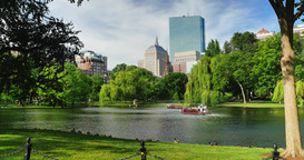 Day Establishing Shot Swan Boats in Boston Public Garden Footage