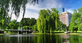 Day Establishing Shot Boston Public Garden Footage