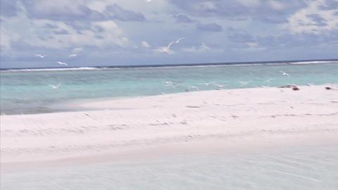 056 Beach truk Footage