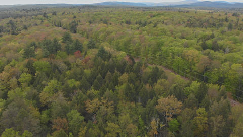 Panoramic view of beautiful landscape Pocono Mountains Footage