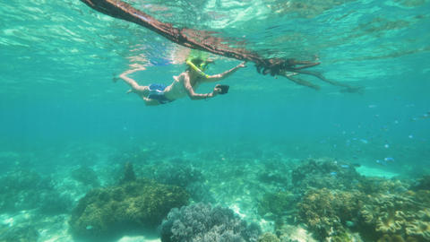 Snorkeling teen girl is taking a pictures of sea life on phone, underwater shot Live Action