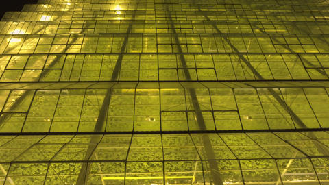 Large industrial greenhouses at night Footage