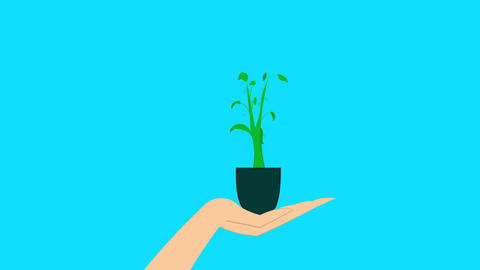 Plant in a hand Animation