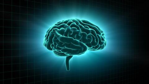 Brain 19 1 A1gD 4k Animation