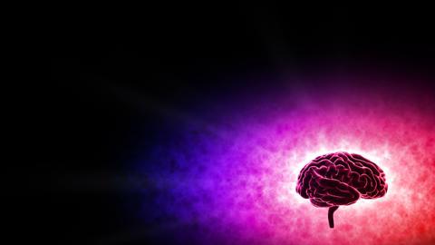 Brain 19 1 A3bB 4k Animation