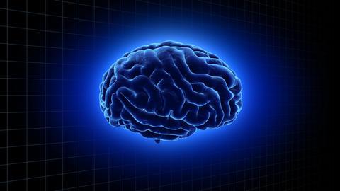 Brain 19 1 B1gB 4k Animation