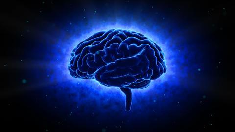 Brain 19 1 C1bB 4k Animation