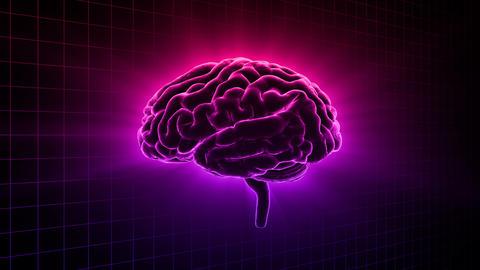 Brain 19 1 C1gD 4k Animation