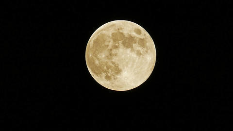 Full moon blue moon 2019 may 18 huge bird bug activity central europe pm 11 Footage