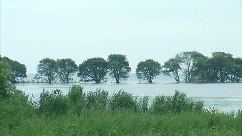 琵琶湖03 Footage