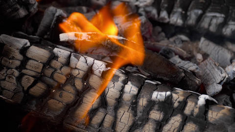Slow motion fire burning charcoal and flame glowing burn GIF