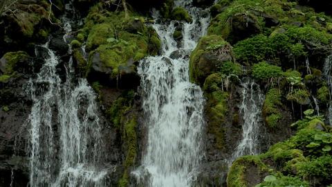 吐竜の滝04 Footage