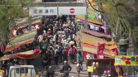 上野公園FX1-1 Footage
