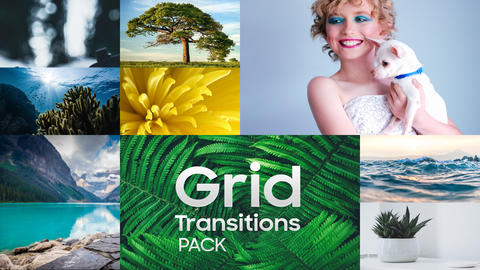 Grid Transitions Pack After Effects Template