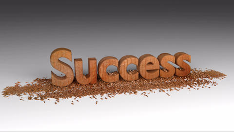 Text Success Wood Chipping Text Animation Animation