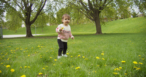 Cute baby girl playing with dandelions in the park Archivo