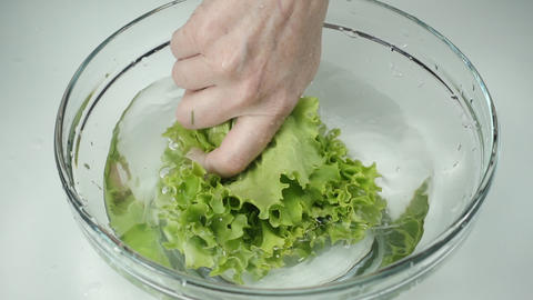The female hand holds fresh lettuce leaves and washes the greens in clean water GIF