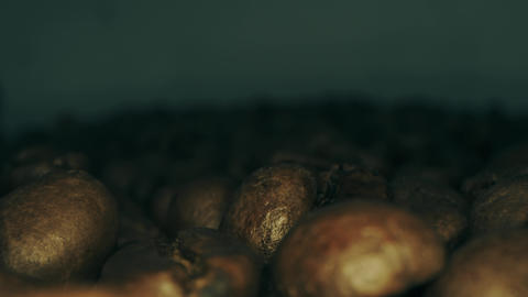 Macro dolly shot of falling roasted coffee beans Live Action