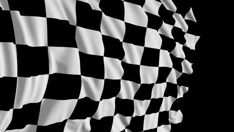 Checkered flag in motion Videos animados
