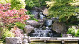 London Kyoto Japanese Garden in Holland Park green peaceful zen waterfall Footage