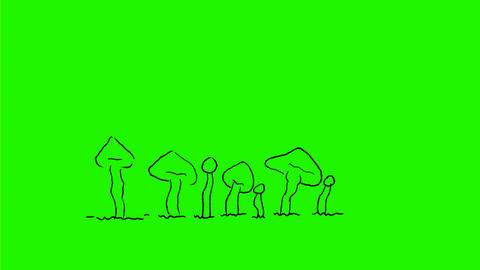 Mushroom or Toadstool Growing Drawing 2D Animation Animation