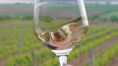 Sommelier swirling, tasting white wine in glass at vineyard Live Action