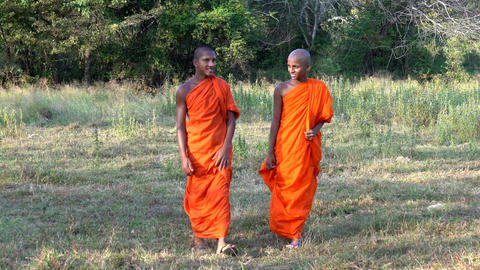 Haberna, Sri Lanka- 2019-03-22 - Two Young Monks Walk Towards Camera in Field Footage