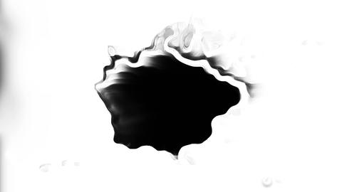 Detail Dripping Ink On White Background Animation