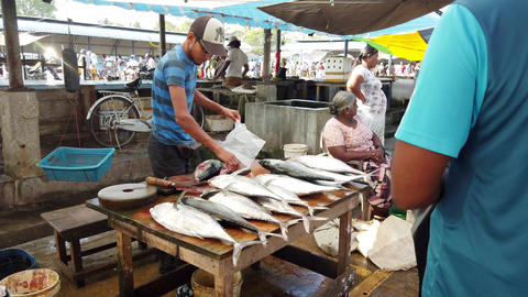 Nogombo, Sri Lanka- 2019-03-22 - Fish Vendor Slices Fish For Customer Footage