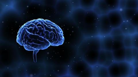Brain Head 19 1 A2bC 4k Animation