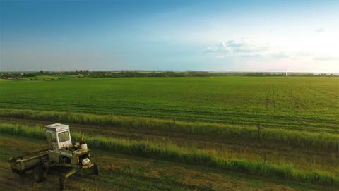 Harvesters Work on Green Field Footage