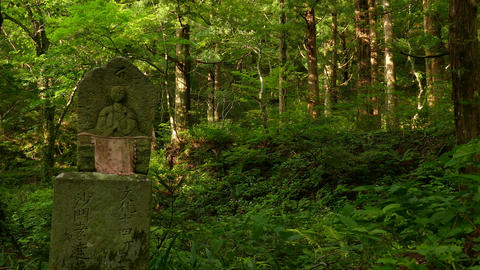 Guardian deity of children and the forest Footage