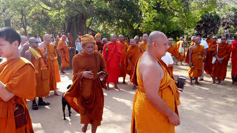 Polonnaruwa, Sri Lanka - 2019-03-23 - Monks On Tour 2 - Taking Video and Selfies Live Action