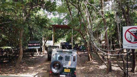 Minneriya National Park, Sri Lanka - 2019-03-23 - Jeeps Line up to Enter Park Live Action