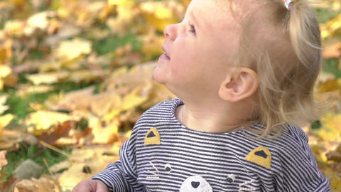 Real Time Autumn Leaves Falling On Little Girl In Park Footage