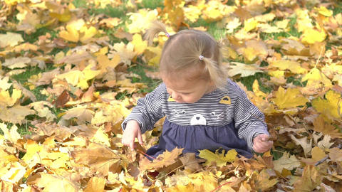 Slow Motion Small Child Playing In Autumn Park.baby Playing With Yellow Leaves Footage