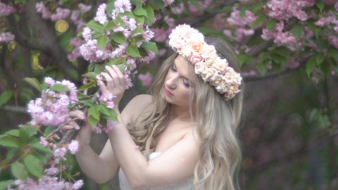 Beauty Young Woman Enjoying Nature In Spring Cherry Orchard.happy Beautiful Footage