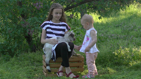 Families Visiting A Community Farm, Girls Sisters Petting Cute Goat Footage