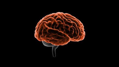 Brain Head 19 1 A1bA5 4k Animation