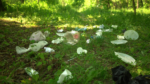 Volunteer scavenge plastic garbage in the summer park. Ecology concept Footage