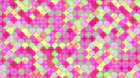 Mov86 maru mosaic loop 10 CG動画