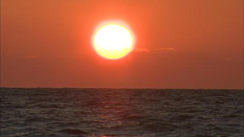 夕陽 ビデオ