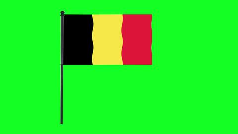 4K Belgium, Belgian flag is waving in green screen Animation