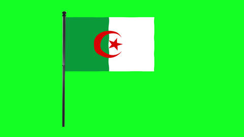 4K Algeria flag is waving in green screen Animation